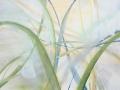 Ontspringen acryl op doek 80 x 120 cm