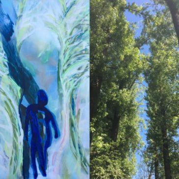 Kijken + Zien = Blauwe adem
