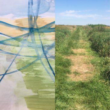 Kijken + Zien = Zomer in de polder